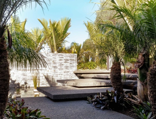 Wanaka Terrace – Landscape